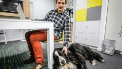 """Blinde student (18) richt eigen IT-bedrijfje op: """"Ik wil nóg eens bewijzen dat mijn handicap geen obstakel vormt"""""""