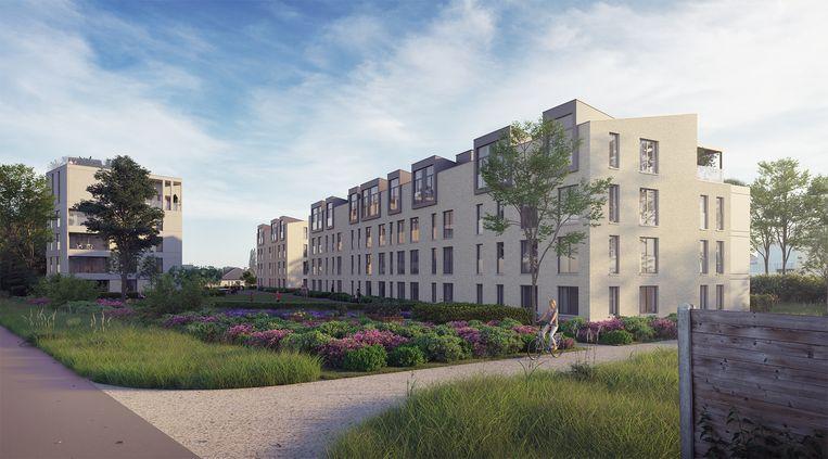 Een toekomstbeeld van woonproject Netheland.