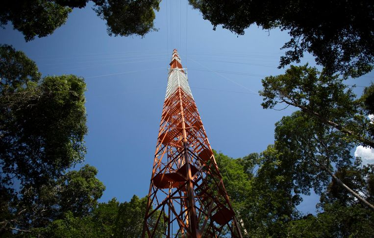 De ruim 300 meter hoge observatietoren midden in het Amazonegebied. Beeld reuters