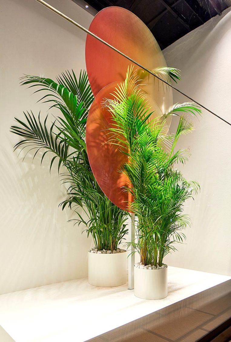 Het stilleven dat de Nederlandse ontwerper Sabine Marcelis inrichtte in de etalages van La Rinascente. Beeld