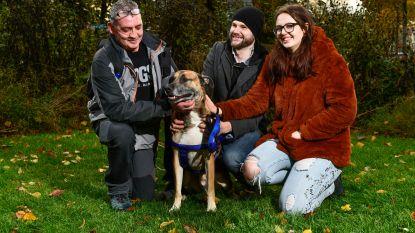 """Terminaal zieke Peter (55) neemt afscheid van zijn hond en beste vriend: """"Nu ik weet dat hij een goede thuis heeft kan ik in alle rust vertrekken"""""""