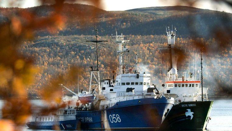 Het schip Arctic Sunrise. Beeld afp