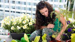 Fleur je saai balkon op met deze groene tips