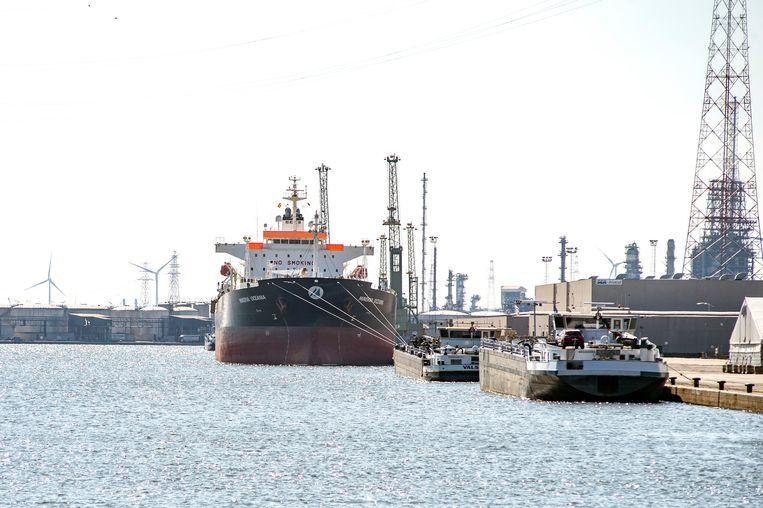 De Minerva Oceania ligt quarantaine in de Antwerpse haven na een uitbraak van covid-19 aan boord.