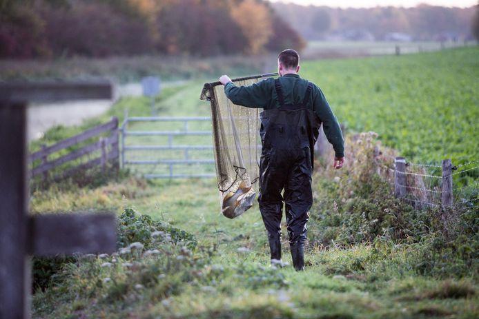 Allemaal dooie vissen in de Berkel na lek van vloeistof Friesland Campina in Lochem. Sportvisser Glenn Dalhuis zet een snoek naar een ander gedeelte over