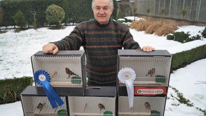 Tielts vogelliefhebber wint zilver en brons met siervogels