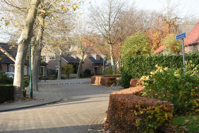 LUYKSGESTEL - In deze straat werd een inwoonster van Luyksgestel aangerand terwijl ze haar hond uitliet.