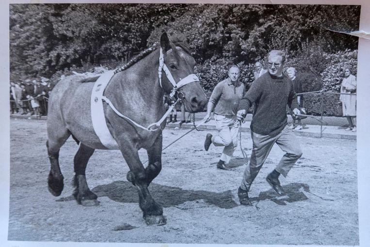 Theo met een van zijn bekroonde boerenpaarden.