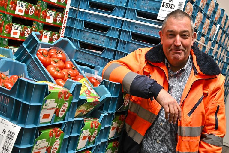 Directeur Paul Demyttenaere van de REO Veiling bij de tomaten, voor het tweede jaar op rij het best verkochte product.