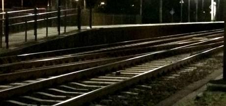 Minder treinen tussen Den Bosch en Zaltbommel door kapotte trein: storing verholpen