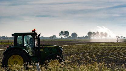 """Provincie Limburg maakt zich klaar voor nieuwe droogteperiode: """"Waterbalans laat toe om Limburgse watertekorten tegen te gaan"""""""