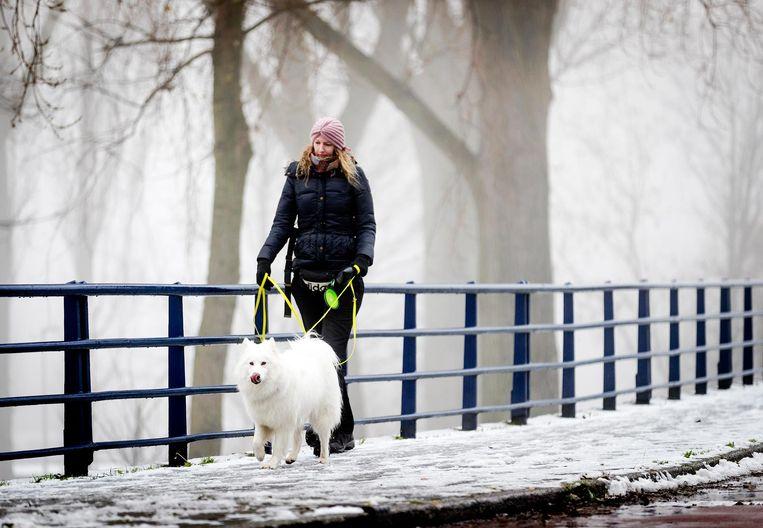 Een vrouw laat haar hond uit in de sneeuw.