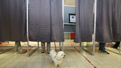 Verkiezingen 2019: Hoe scoorden de Ardooise kandidaten?