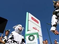Toen in Woerden: mensen protesteerden in koeienpakken bij Melkunie