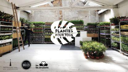 Weekendtip: unieke plantenverkoop in hartje Brussel