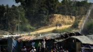 Olifanten doden tien gevluchte Rohingya in Bangladesh