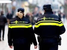 'Politie registreert afkomst werknemers in streven naar meer diversiteit'