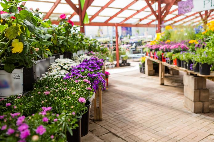 Tuincentra bieden tegenwoordig ook cursussen aan en spelen een sociale rol.