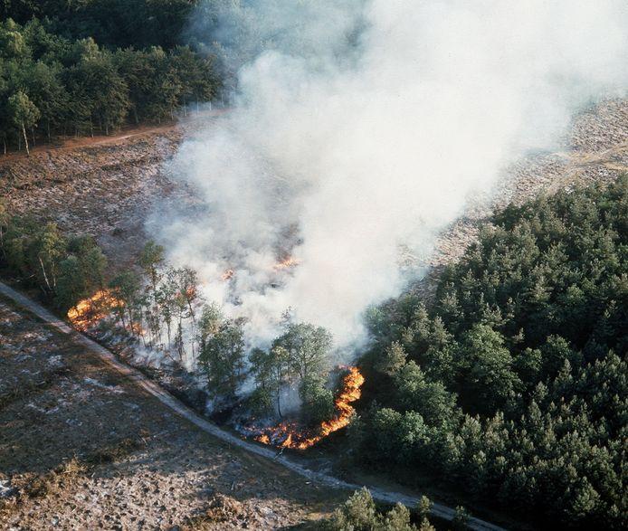 Een bosbrand op Park de Hoge Veluwe bij Arnhem, in de zomer van 2018.