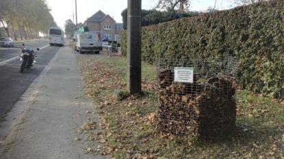 Gemeente plaatst bladkorven langs enkele straten