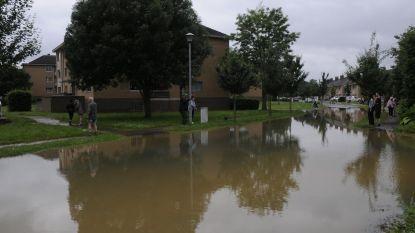 Nieuwe meetpunten moeten Diest tijdig waarschuwen voor dreigende overstroming
