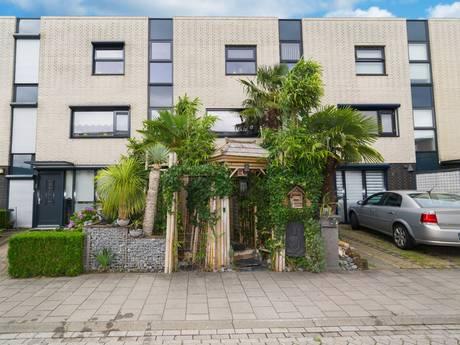 Opmerkelijk junglehuis in Roosendaal zoekt Tarzan en Jane