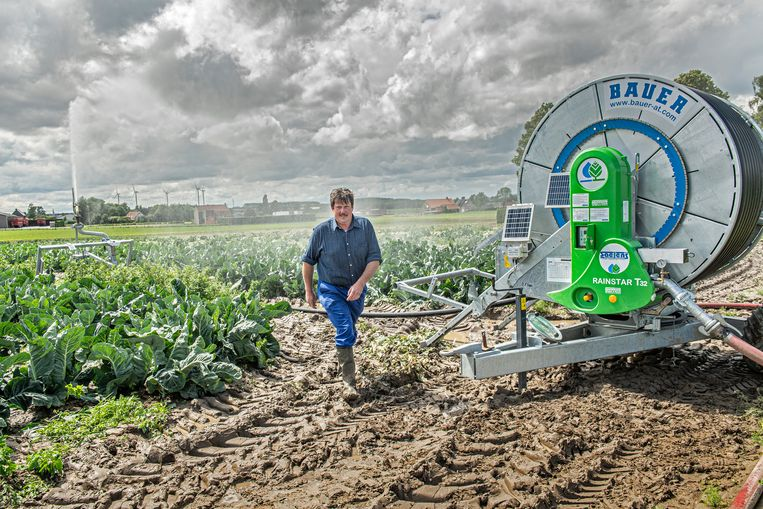 De akkers van Rik Delammeileure worden beregend met het gezuiverde afvalwater van Ardo.