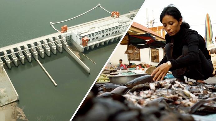In de rivier verrijst de een na de andere mega-dam. Dat begon in China en nu ook in Thailand, Laos en Cambodja.