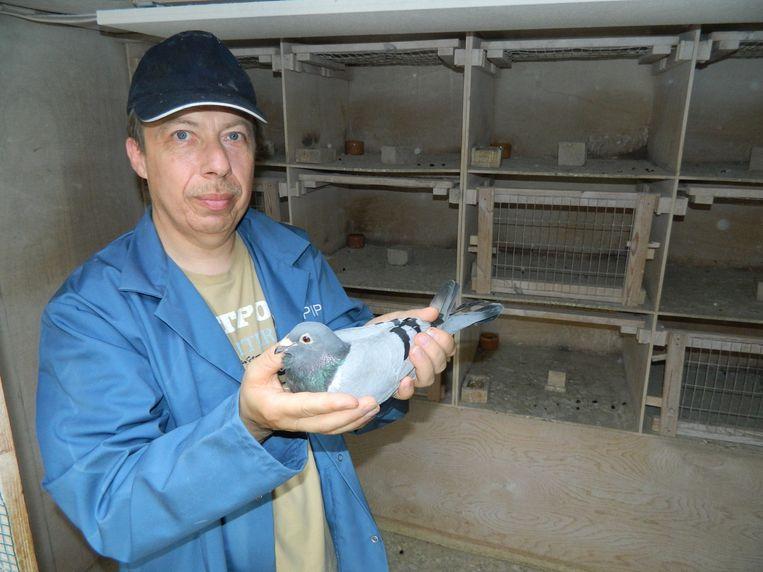Martin Martens met zijn duif die het wel gehaald heeft en weer veilig thuis zit. Hij wacht nog op een duif die zaterdag ook meevloog, maar nog niet terug is.
