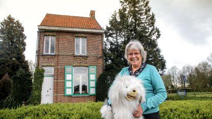 Van een dagschotel bij Pascalleke tot bezinnen onder de Witseboom: hier vind je de bekendste filmlocaties in Vlaanderen