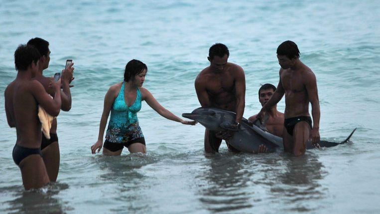 Badgasten in Sanya, in de Chinese provincie Hainan, zetten een dolfijn op de foto, juni vorig jaar. Het beest zou even later omkomen. Beeld reuters