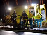 Eis 240 uur werkstraf tegen vrouw (22) die al bellend oudere vrouw en hond doodreed in Zundert