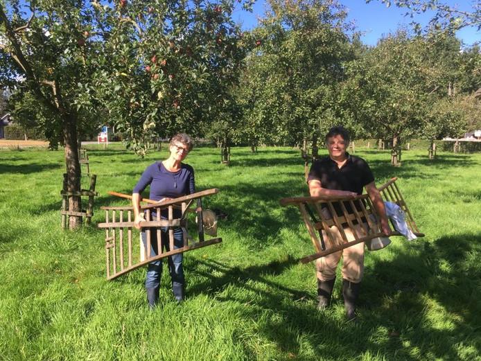 Vrijwilligers verzamelen appels in een van de particuliere boomgaarden.