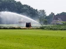 Europees Hof moet kijken of stikstof-regels voor boeren kloppen