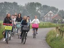 Geen vrees meer voor fietsende leerling: verkeerslichten De Tol blijven
