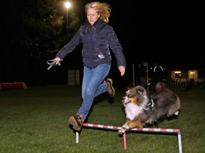 """Esther Yedema is baas van Harris. ,,Het is een hond die uitdaging nodig heeft."""""""