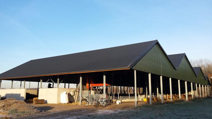 De Kwatrijnstal in Kaatsheuvel is een van de nieuwe stalsystemen die wordt getest.