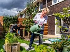 Primeur: middenin Leidsche Rijn komt een voedselbos van 15.000m2 vol bomen en planten met eetbare vruchten