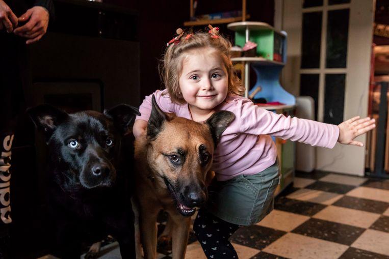De lieve Cor samen met haar honden, die ze doodgraag ziet.