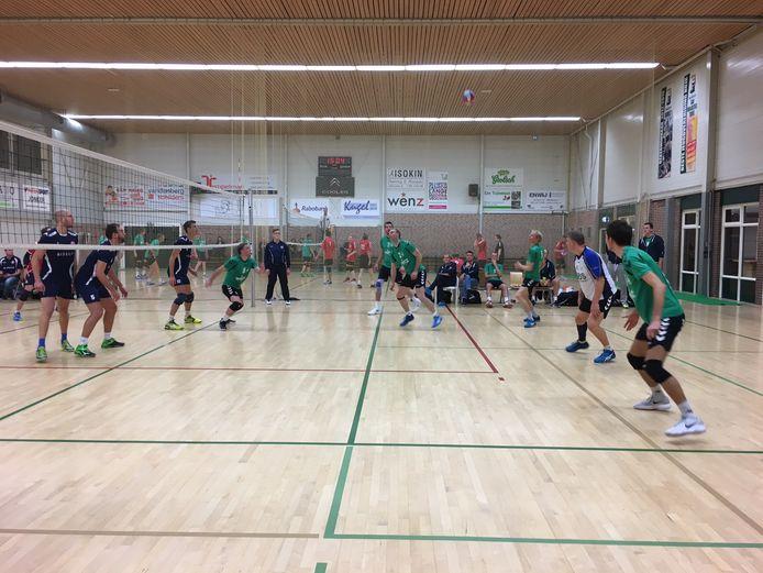 De volleyballers van Alterno pakten een punt.