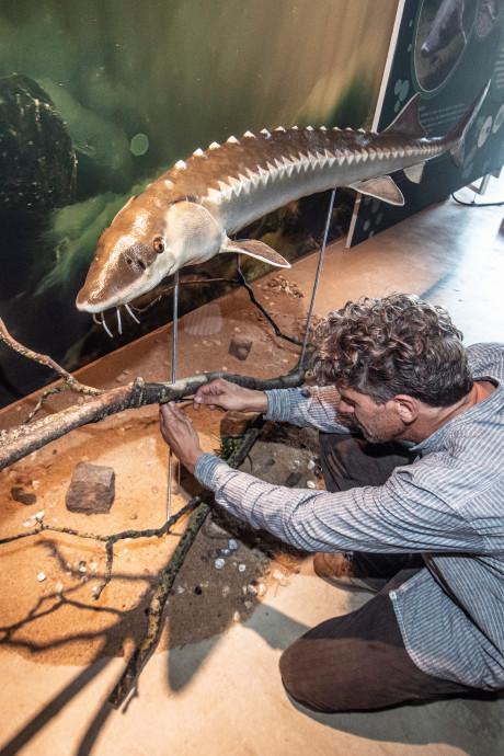 Nieuwe expo in De Bastei: de verborgen onderwaterwereld van de Waal