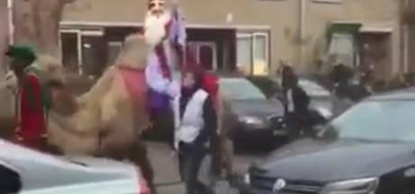 Sinterklaas maakt opvallende entree op kameel in Amsterdam Osdorp