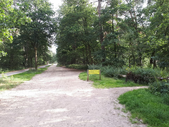 Mishandeling in Loonse en Drunense duinen in Kaatsheuvel