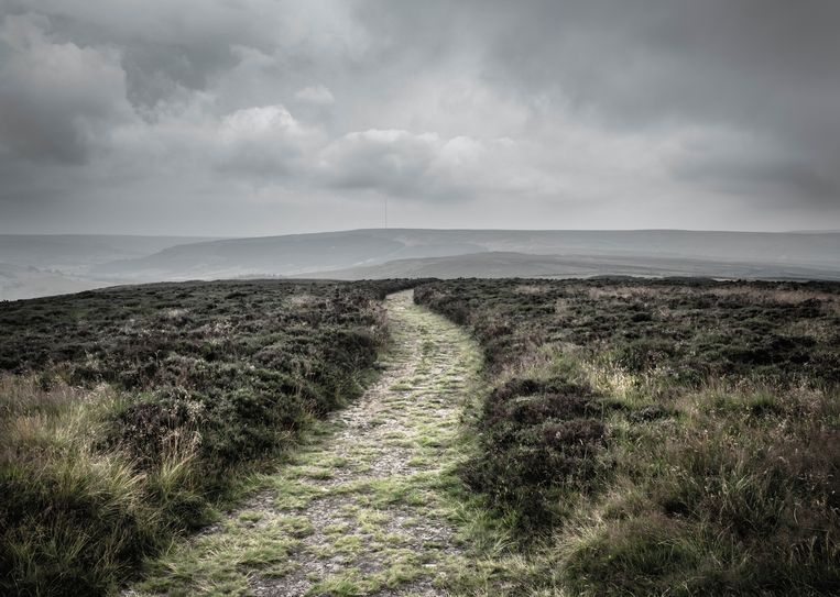 North York Moors Beeld Getty Images