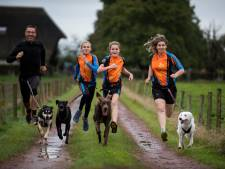Dit gezin staat op een EK met hun straathonden: 'Zo bijzonder dat je hond dat voor jou wil doen'