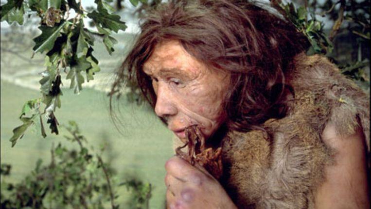 Een neanderthaler.