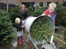 Nu al topdrukte bij kerstbomenverkoop