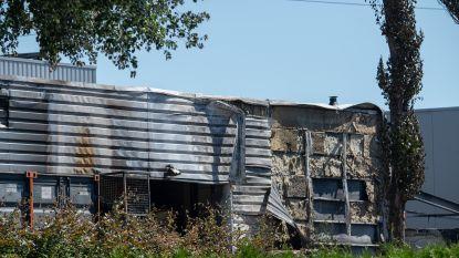 """Textiel- en hygiënebedrijf CWS likt wonden na verwoestende brand: """"Vuurbal vloog naar binnen en zette hal in lichterlaaie"""""""