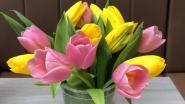 """Bloemenzaak wil snijbloemen van vernieting redden: """"Laat ons bloemetjes aan rusthuisbewoners en zorgverleners schenken"""""""