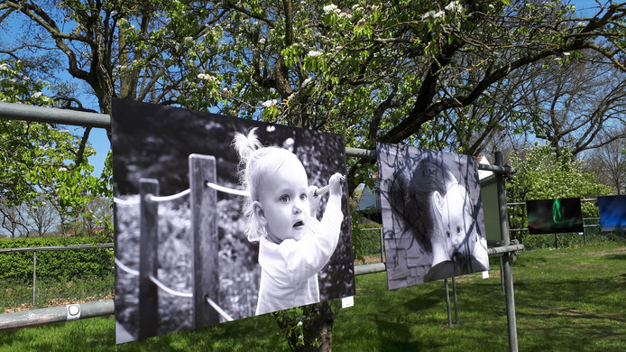 Enkele van de foto's die in de boomgaard worden tentoongesteld.